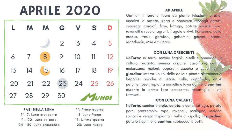 Calendario Lunare Dicembre 2017.Calendario Lunare 2019