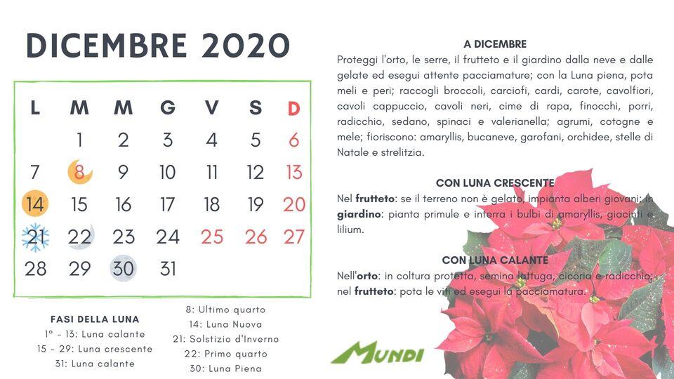 Calendario Lunare Orto.Calendario Lunare Per La Semina Calendario Lunare Dicembre