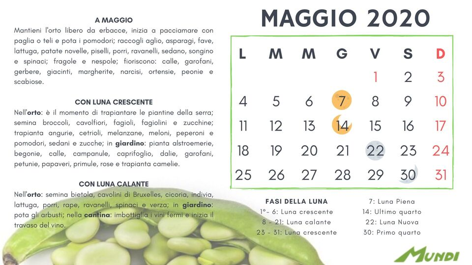 Calendario Lunare Maggio.Calendario Lunare 2019