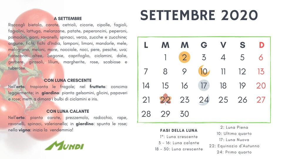 Calendario Lunare Orto.Calendario Lunare 2019