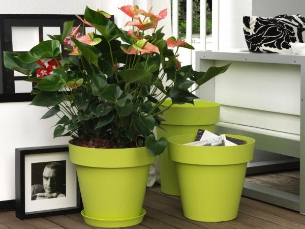 Vasi e fioriere for Vendita vasi plastica